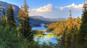Puisi Tentang Lingkungan Alam