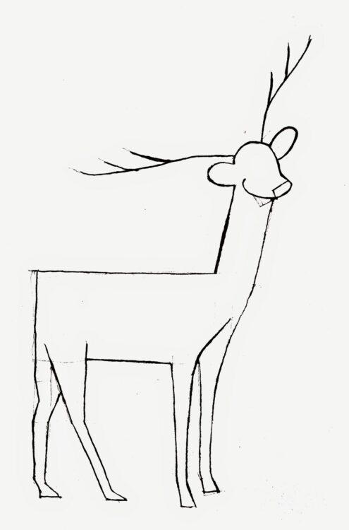 sketsa gambar rusa