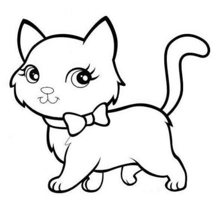 sketsa gambar hewan kucing