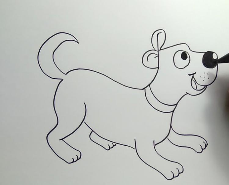 sketsa gambar hewan