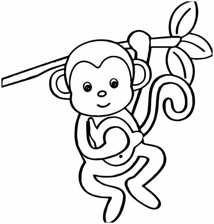 sketsa monyet bergelantungan